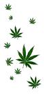 'Las drogas'