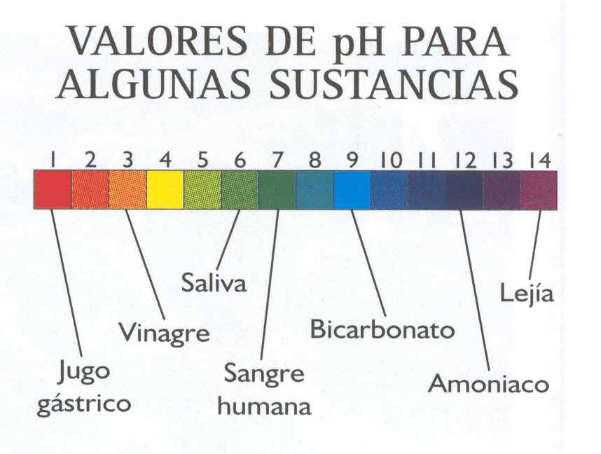 'Agua y sales minerales'