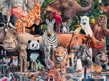 'Derechos de los animales'