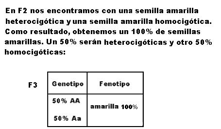 'Herencia gen�tica'