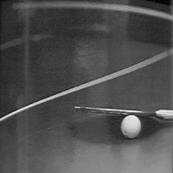 'Tenis de mesa'