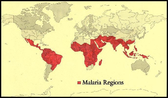 Malaria