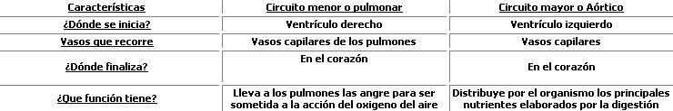 'Sistema circulatorio'
