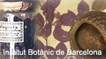 'Barcelona # Bartzelona'