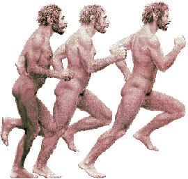 'El Hombre y su Evolución'