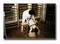 'Fisioterapia'