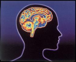 'Psicología moderna'